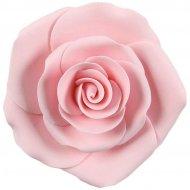 Rose Maxi (8 cm) -  Non comestible