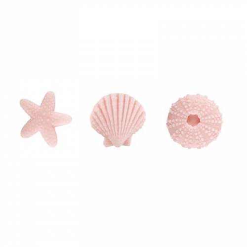 3 Assortiments de Coquillage Rose - Sucre