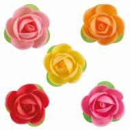 5 Fleurs Sophie