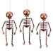 8 Squelettes Cuivre à Suspendre (24 cm). n°1