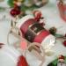 12 Lunettes Renne de Noël - Carton. n°5
