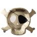 Contient : 1 x 8 Grandes Assiettes Golden Pirate (27 cm). n°2
