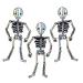3 Squelettes Géants - Iridescent. n°1
