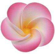 Kit grandes et petites Fleurs en Sucre Rose/Blanc