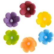 10 Minis Fleurs Color�s