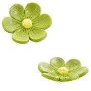 2 Fleurs Anémones (3,4 cm et 2,2 cm) - Vert kaki
