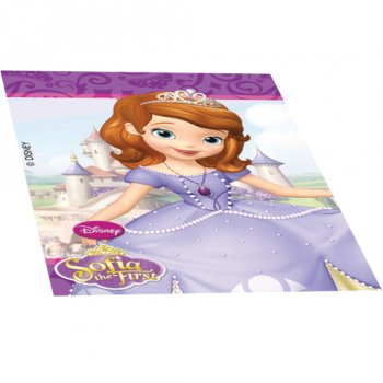4 Mini-blocs notes Princesse Sofia