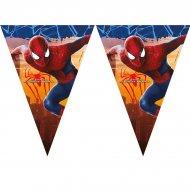 Guirlande fanions Amazing Spiderman 2
