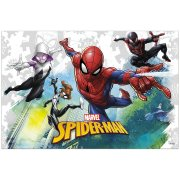 Nappe Spiderman Team