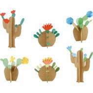 Kit Créatif - Mes Cactus