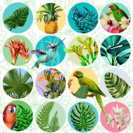 20 Serviettes Tropical Collection