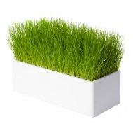 Fair Way blanc, le chemin de table végétal