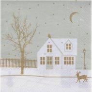 20 Serviettes Village de Noël