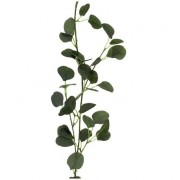 Guirlande Eucalyptus