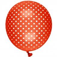 8 Ballons Garden Fantaisie