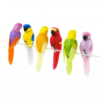 6 Pinces Perroquet Paradis Tropical