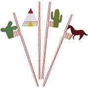20 Pailles et 4 décors Pow Wow