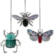 3 Déco Insectes Rétro 2D (30, 22, 19 cm)
