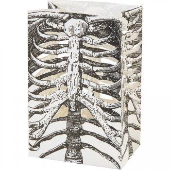 6 Lanternes Squelette (14 cm) - Papier