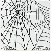 Nappe Plastique Toile d'araignée