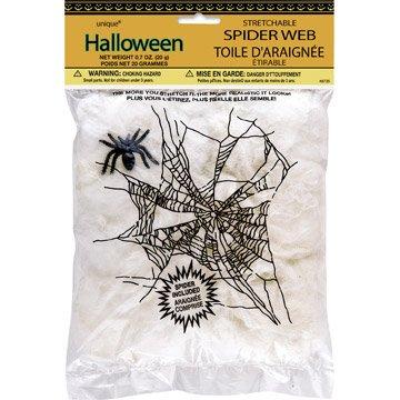 Toile d araignée blanche