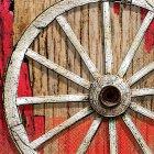 16 Serviettes Western Rodeo