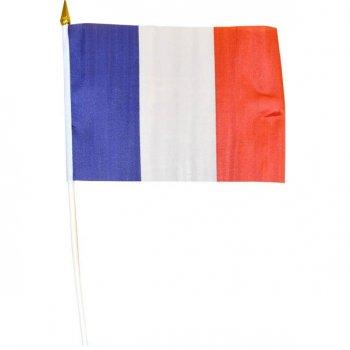 Drapeau France Mini