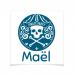 8 Tatouages à personnaliser - Emblème Pirate. n°1