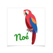 8 Tatouages à personnaliser - Perroquet