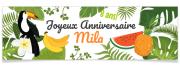 Bannière à personnaliser - Tropical Toucan