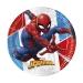 Boîte à Fête - Spiderman Compostable. n°1