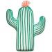 Boîte à fête Cactus. n°1