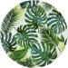 Grande Boîte à Fête Tropique Jungle. n°1