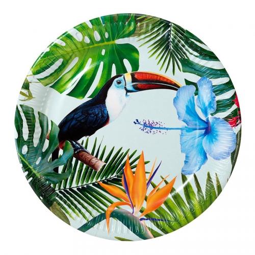 Boite à Fete Tropical Birds