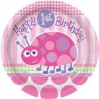 Maxi bo�te � f�te First Birthday Coccinelle Rose
